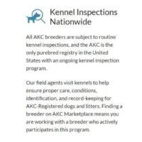 canine-review-akc marketplace screenshot promises guarantees