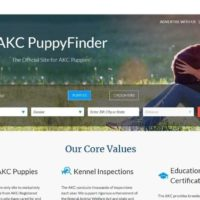 canine-review-marketplace.akc.org