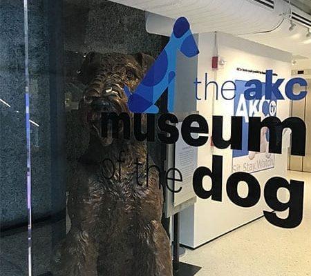 tcr-_0012_AKC-Museum-Lobby-9