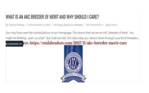 """Screenshot, Endless Mountain Labrador Blog Post: """"What is an AKC Breeder of Merit and Why Should I Care?"""""""