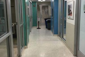 ASPCA hallway