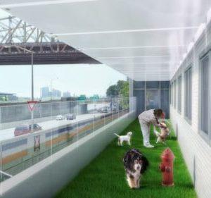AMC-DogRun-Renovation Plans