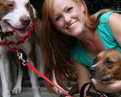 A Dog Changed Her Life. Now She Rescues Them By The Dozen.