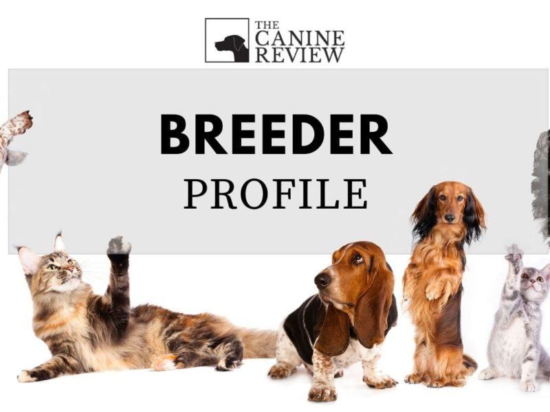 TCR-breeder-placeholder