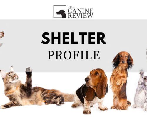 TCR-shelter-placeholder