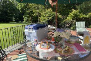 dog birthday party july 2020 decorations