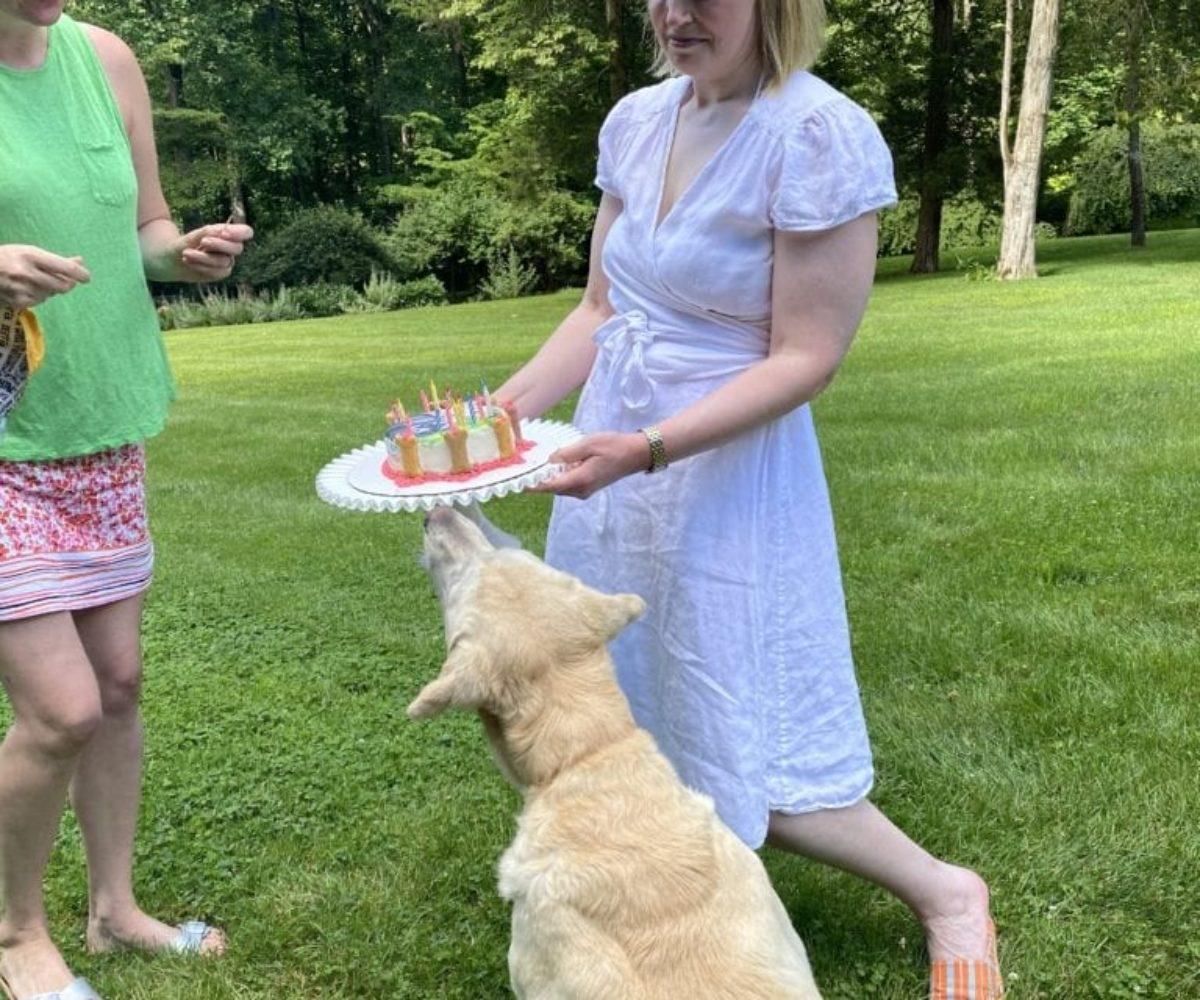 dog birthday party july 2020 nellie emily katy cake
