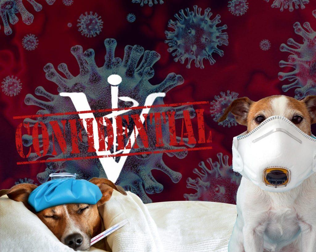 covid-confidential-dog-records-1