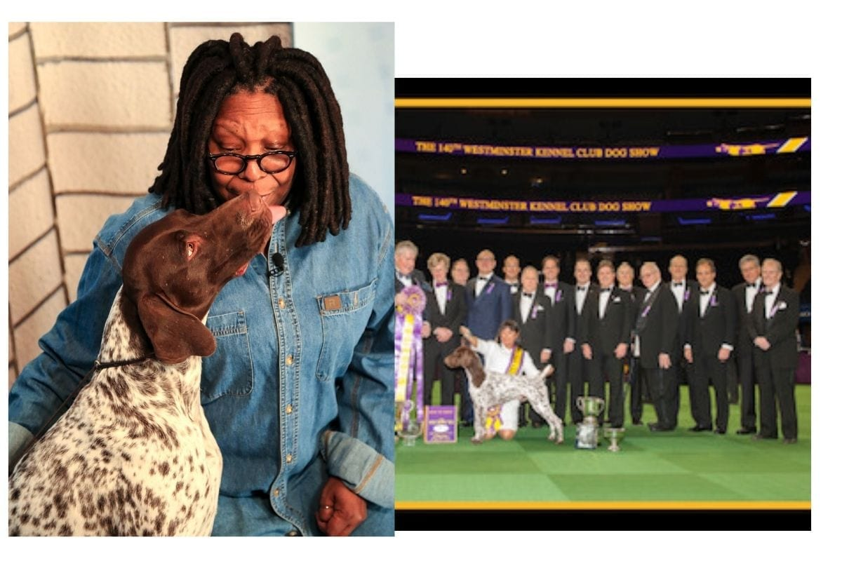 cj wkc and whoopi