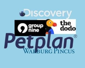 Dodo parent company Group Nine Media takes minority stake in Petplan