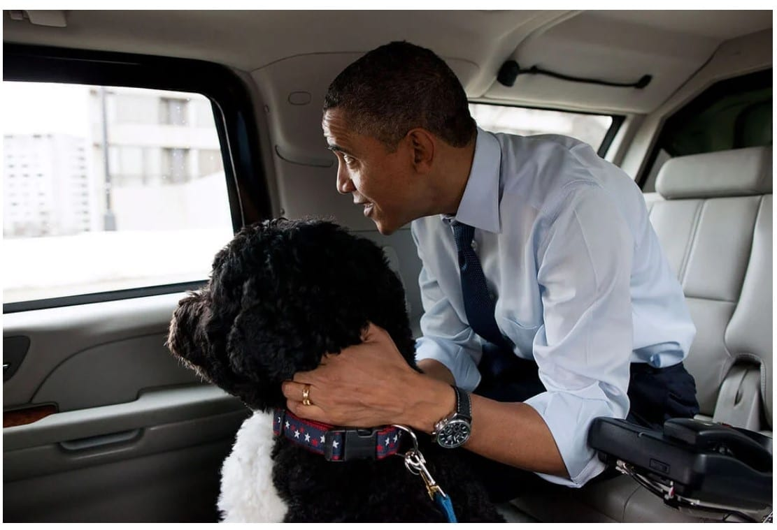 Bo and President Obama christmas shopping