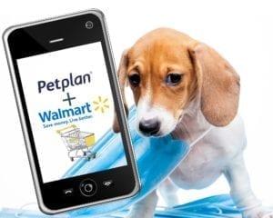 Walmart and its first partner, Petplan