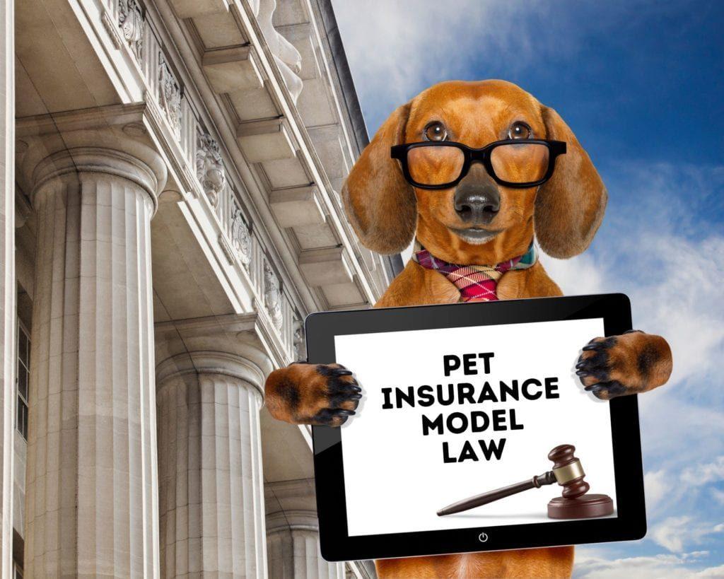 pet-insurance-model-law