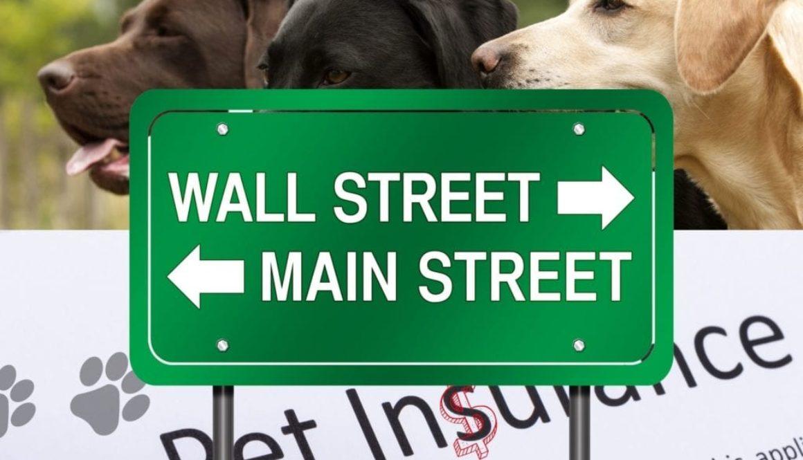 pet ins main street3